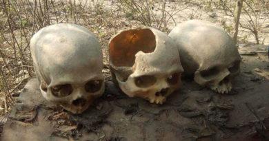 Skeleton mystery in up1