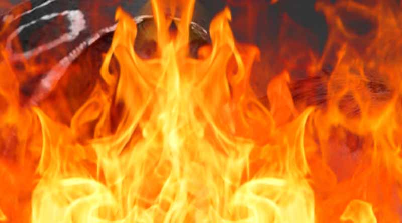 UP Bihar border mother and son burnt alive