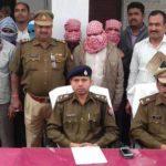 पुलिस को बड़ी कामयाबी- बावरिया गैंग के 10 बदमाशों  गिरफ्तार