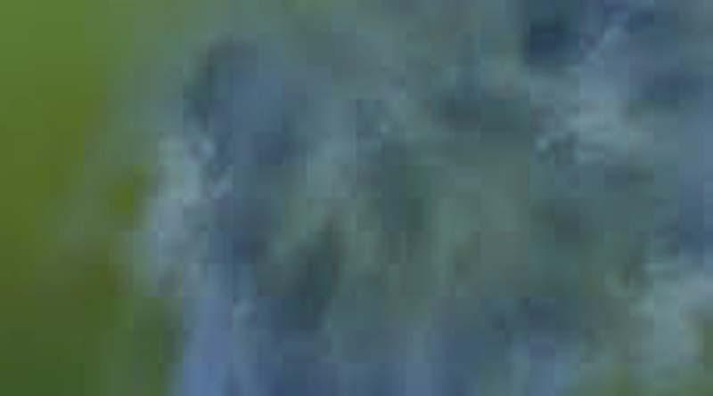 gas leakage from-ballia kali-temple in barapatro village